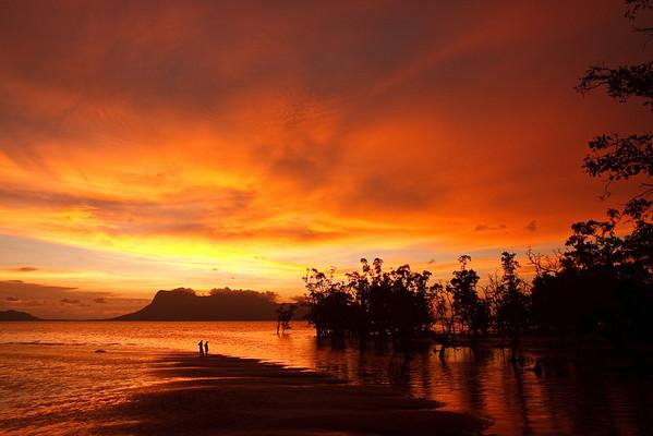 Bako National Park Sarawak, Borneo